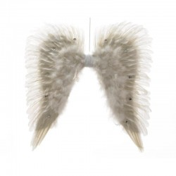 Ailes ange plumes/prre strass