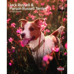 Calendrier jacks Russell &...