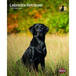 Calendrier labradors retriever