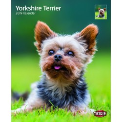 Calendrier yorkshires terriers