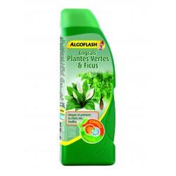 Engrais plantes vertes et...