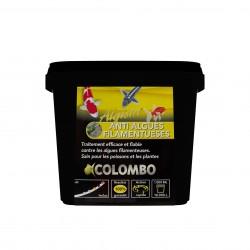 Colombo algisin...
