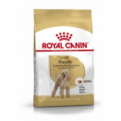 Caniche Adult breed health...
