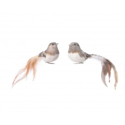 Oiseau a/plume s/clip...