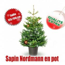 Nordmann pot 125/150