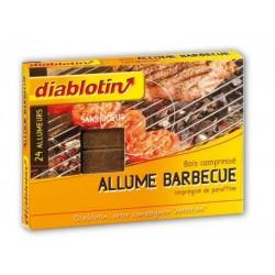 Allume barbecue cubes de...