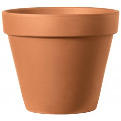 Vase brut cotto mini sun...