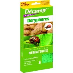 Nematodes contre doryphores