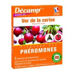 Pheromone ver cerise