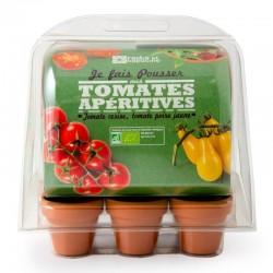 Mini serre 6 pots tomates bio