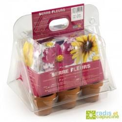 Mini serre 6 pots fleurs