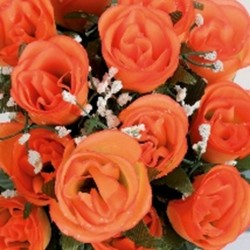 Boutons de roses 24tg orang