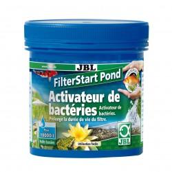 Filterstart pond bacteries...